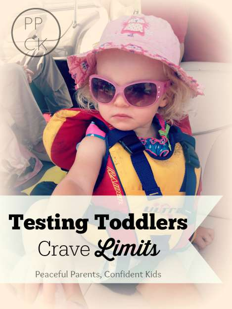 Testing Toddlers Crave Limits